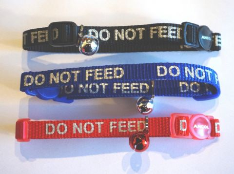 A REFLECTIVE  CAT COLLAR WITH DO NOT FEED LETTERING- RED BLACK & BLUE pack of 3